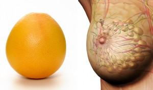 06-Grapefruit-BreastsFoods-That-Look-Like-Body-Parts-1-300x177